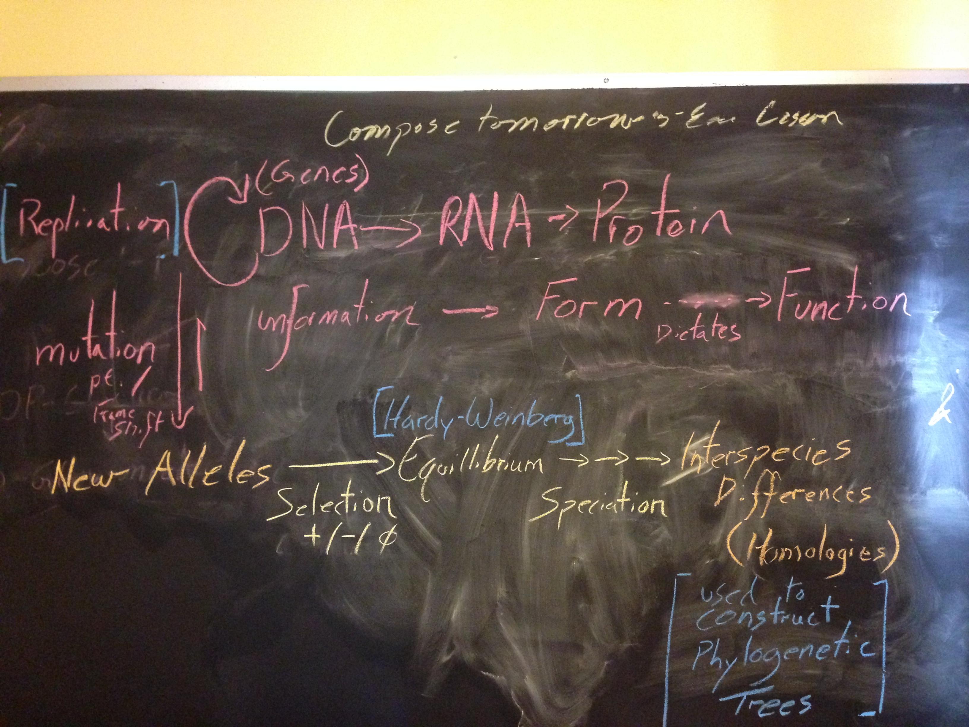 i love having a blackboard in my home office downhousesoftware